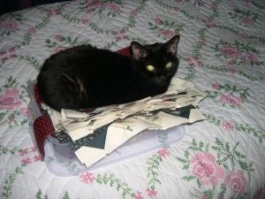 catNBox