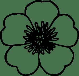 1146-buttercup-flower-design