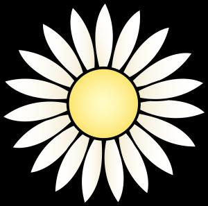 white-flower-clipartwhite-daisy-flower---free-clip-art-surelptx